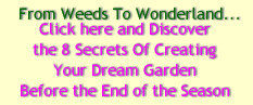 Secrets To Garden Designs